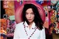 Styles de Björk