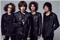 Fanfics / Fanfictions de Catfish and the Bottlemen