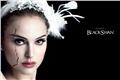 Styles de Cisne Negro
