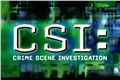 Styles de CSI: Crime Scene Investigation