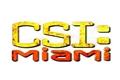 Styles de CSI: Miami