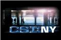 Styles de CSI: New York