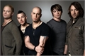 Fanfics / Fanfictions de Daughtry