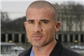 Styles de Dominic Purcell