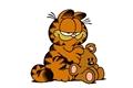 Styles de Garfield