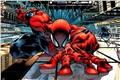 Categoria: Homem-Aranha