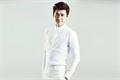 Styles de Li Yifeng