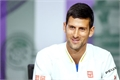 Fanfics / Fanfictions de Novak Djokovic