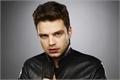 Categoria: Sebastian Stan