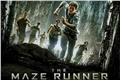 Fanfics / Fanfictions de The Maze Runner