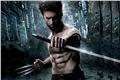 Fanfics / Fanfictions de Wolverine