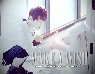 Fanfic / Fanfiction Make A Wish