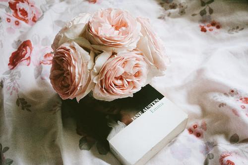 Fanfic / Fanfiction Jane Austen Book Club