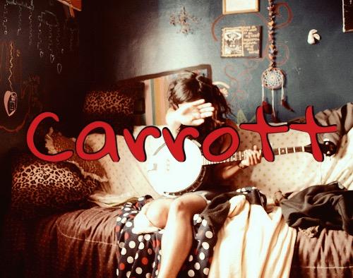 Fanfic / Fanfiction Carrott