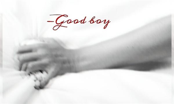 Fanfic / Fanfiction Good boy •Vhope•