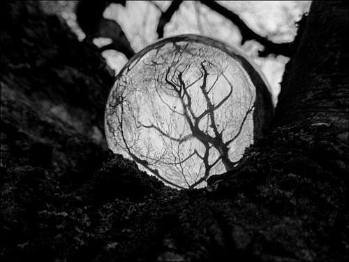 Fanfic / Fanfiction Magie Noire (Interativa).