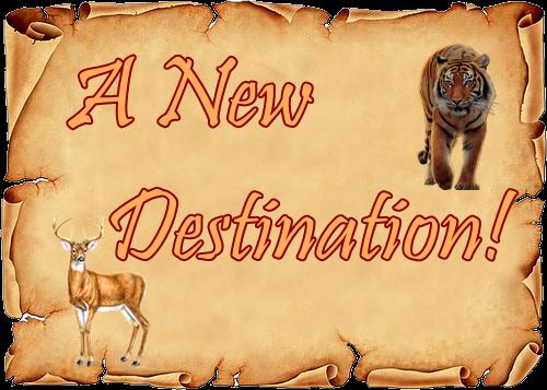 Fanfic / Fanfiction A New Destination! - Interativa