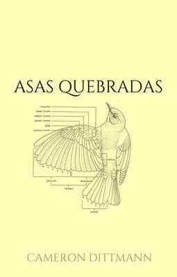 Fanfic / Fanfiction Asas Quebradas