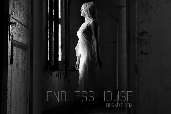 Fanfic / Fanfiction Endless House