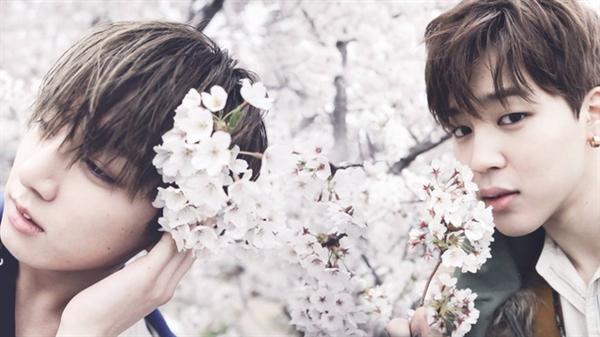 Fanfic / Fanfiction Jeon JungKook Me Ama ?!
