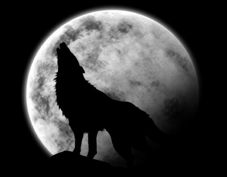 Fanfic / Fanfiction Lua dos Lobos