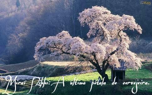 Fanfic / Fanfiction Miraí Nikki: A Última Pétala de Cerejeira