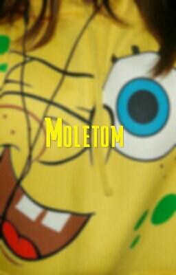 Fanfic / Fanfiction Moletom
