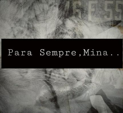 Fanfic / Fanfiction Para Sempre,Mina..