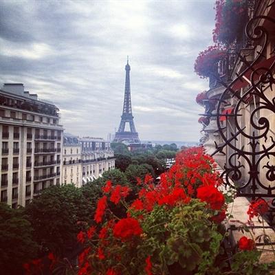Fanfic / Fanfiction Paris Nossa de Cada Dia