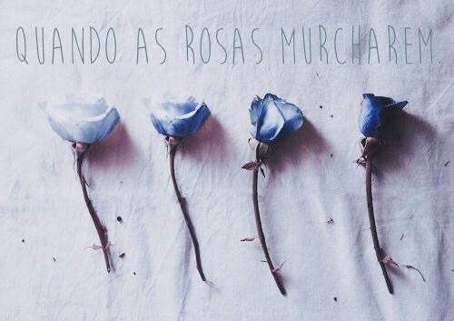 Fanfic / Fanfiction Quando as rosas murcharem.