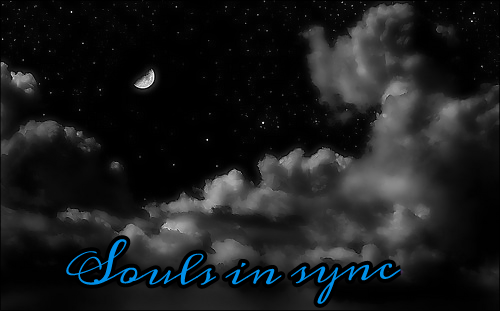 Fanfic / Fanfiction Souls in sync