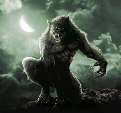 Fanfic / Fanfiction Werewolves and Supernatural Creatures (Rewrite)