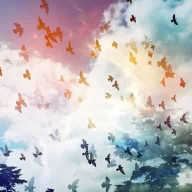 Fanfic / Fanfiction A natureza em versos reluzentes