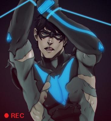 Fanfic / Fanfiction Asa Protetora A Nightwing Fanfic DC Comics