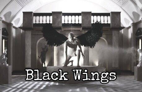 Fanfic / Fanfiction Black Wings (Vkook)