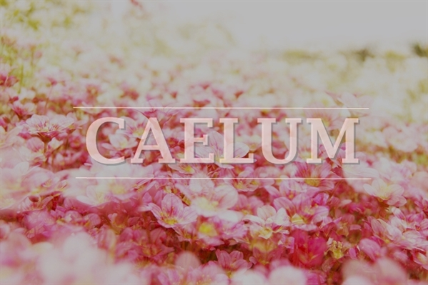 Fanfic / Fanfiction Caelum