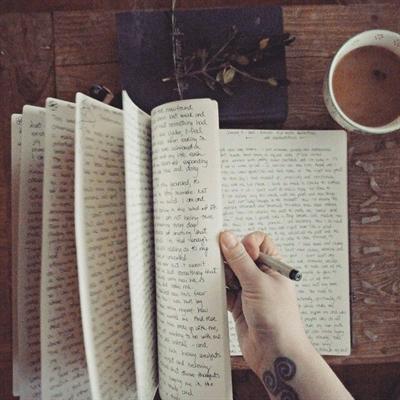 Fanfic / Fanfiction Dear Diary
