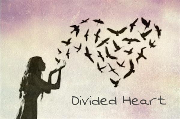Fanfic / Fanfiction Divided Heart