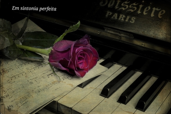 Fanfic / Fanfiction Em sintonia perfeita