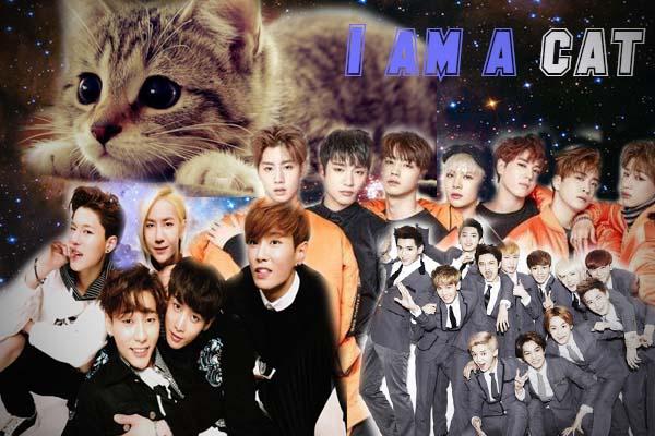 Fanfic / Fanfiction I am a cat (Imagine GOT7, EXO, UNIQ,BTS)
