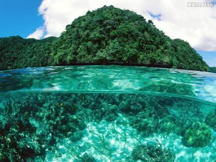 Fanfic / Fanfiction Island