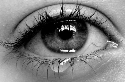 Fanfic / Fanfiction Lágrimas Que Caem Sobre o Papel