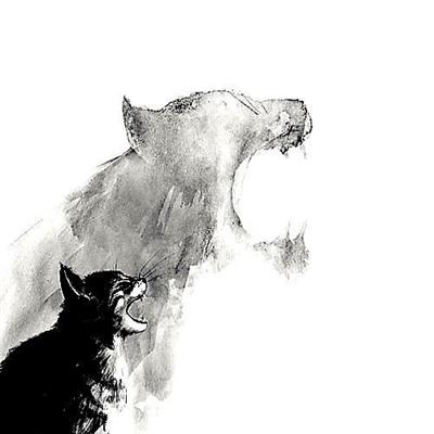 Fanfic / Fanfiction Meu gato, Leão