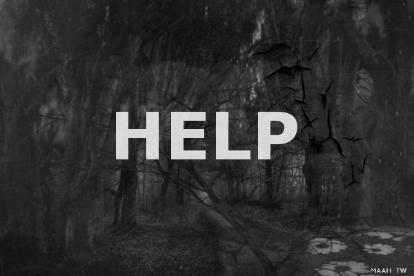 Fanfic / Fanfiction MITW - Help