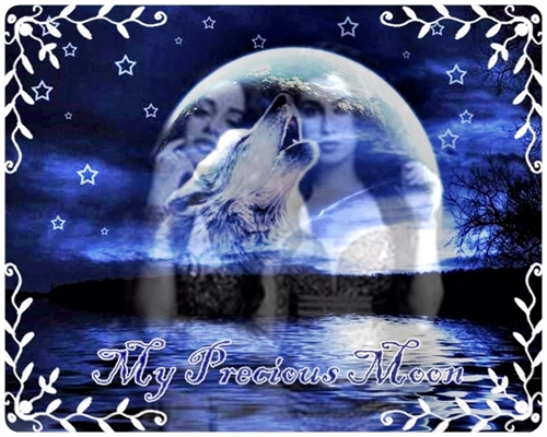 Fanfic / Fanfiction My Precious Moon