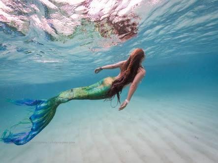 Fanfic / Fanfiction Rainha dos Mares