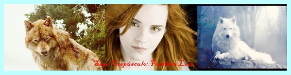 Fanfic / Fanfiction Saga Crepúsculo: Forbiden Love