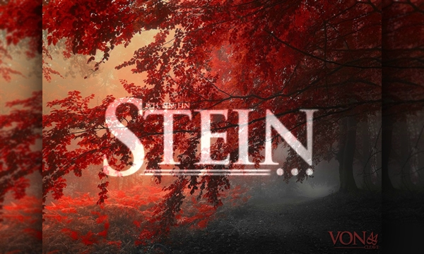 Fanfic / Fanfiction Stein