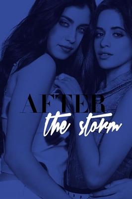 Fanfic / Fanfiction After The Storm