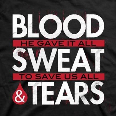 Fanfic / Fanfiction Blood, Sweat & Tears